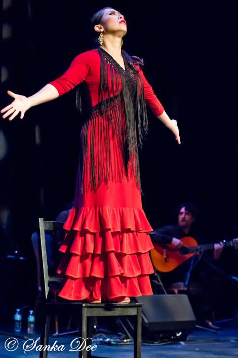 Kasandra-Flamenco-Chair