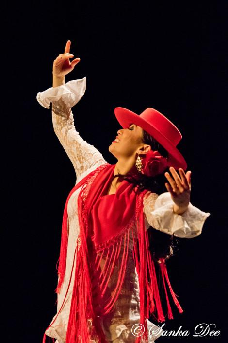 Kasandra-Flamenco-Garrotin