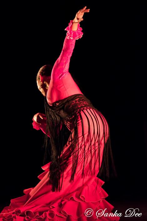 Kasandra-Flamenco-Pink_Bata