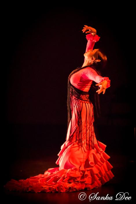 Kasandra-Flamenco-Pink_Bata-Profile
