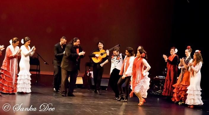 Kasandra-Flamenco-Por-Fiesta
