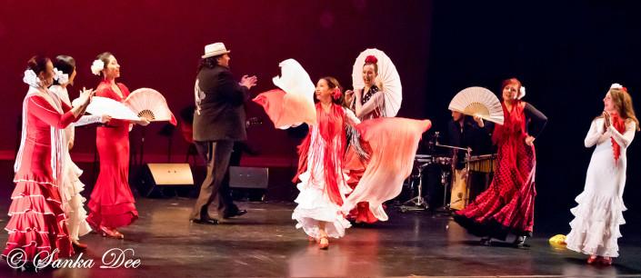Kasandra-Flamenco-Tarara-Bancube