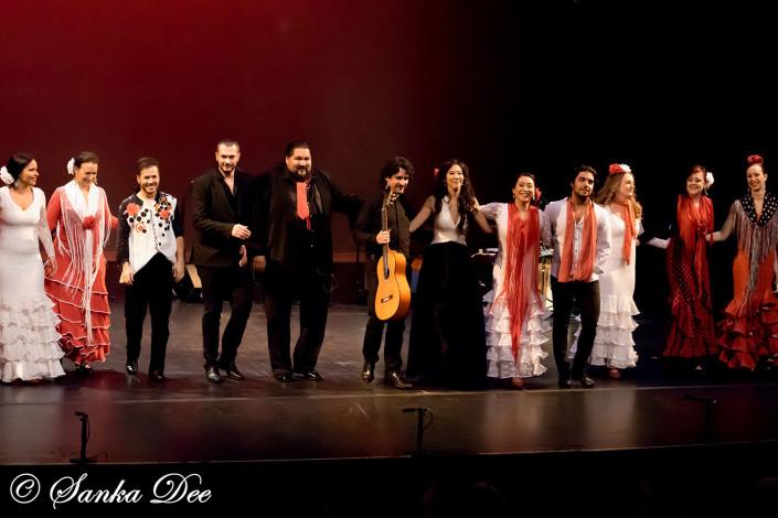 Kasandra-Flamenco-Tarara-Bows