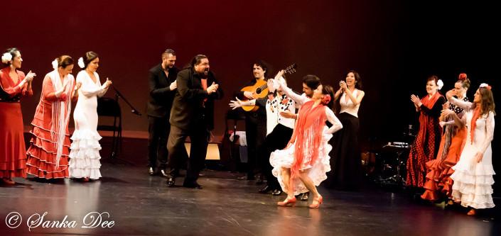 Kasandra-Flamenco-Tarara-Finale