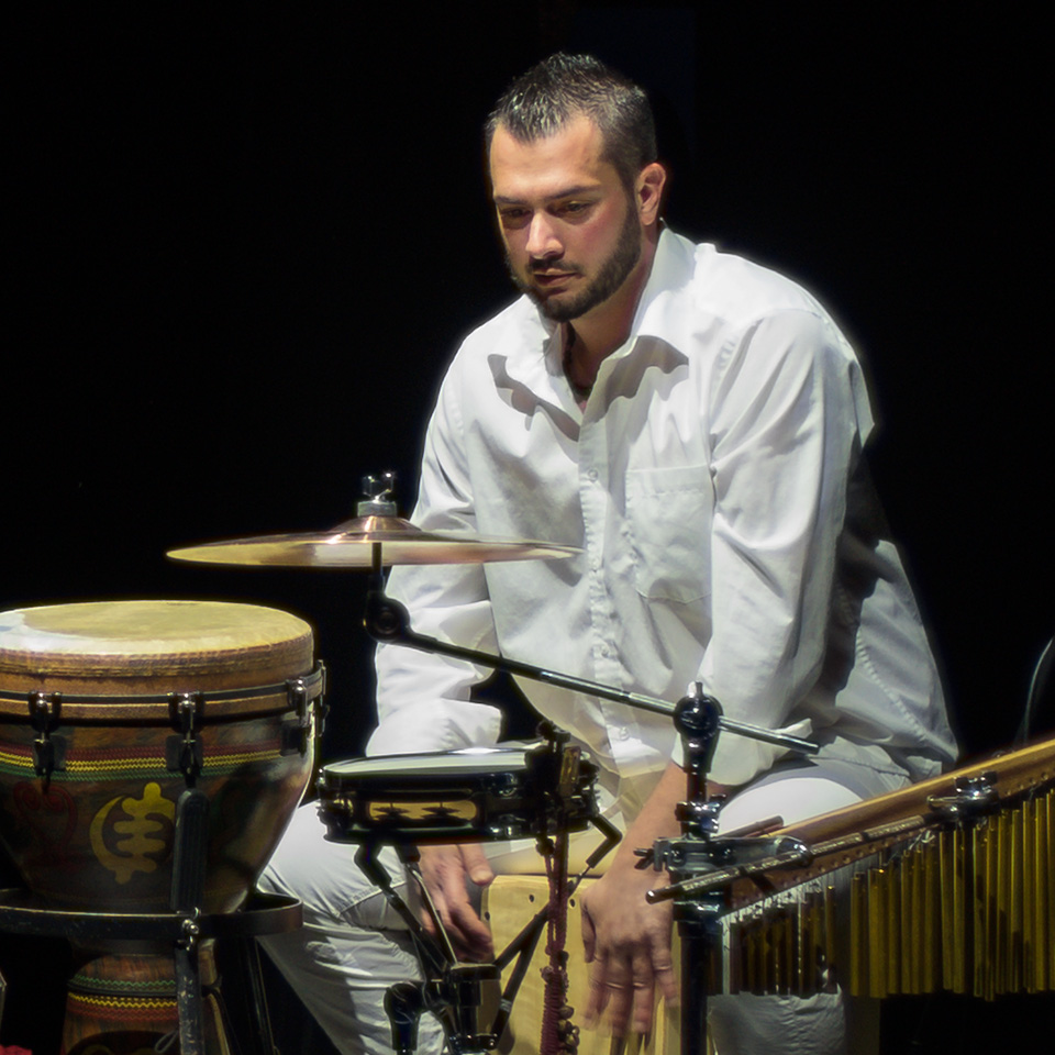 Davide Sampaolo - Percussionist